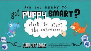 Get Puppy Smart